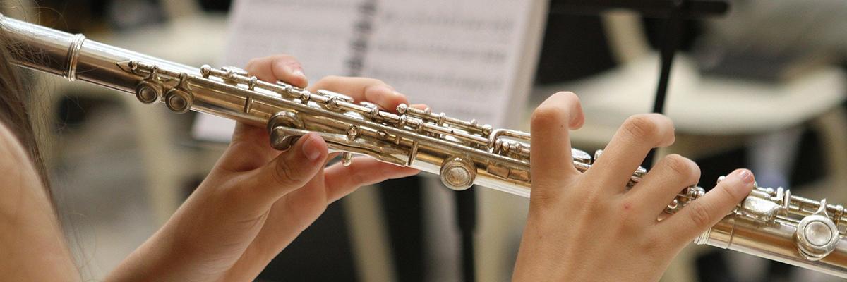 Musikschule Gnas/Straden